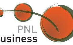 PNL2011
